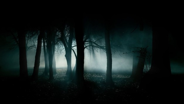 39946_horror_creepy_dark_creepy_forest