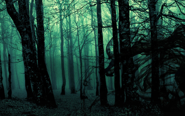 49257_photo_manipulation_dark_creepy_forest