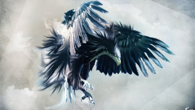 eagle-wallpaper-for-iphone